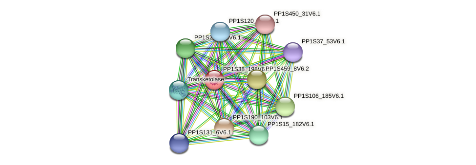 PP1S38_198V6.1 protein (Physcomitrella patens) - STRING interaction network