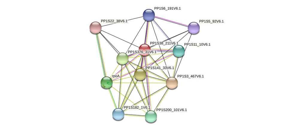 PP1S38_211V6.1 protein (Physcomitrella patens) - STRING interaction network