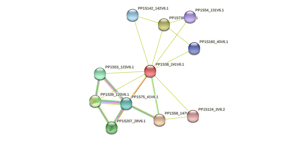 PP1S38_241V6.1 protein (Physcomitrella patens) - STRING interaction network