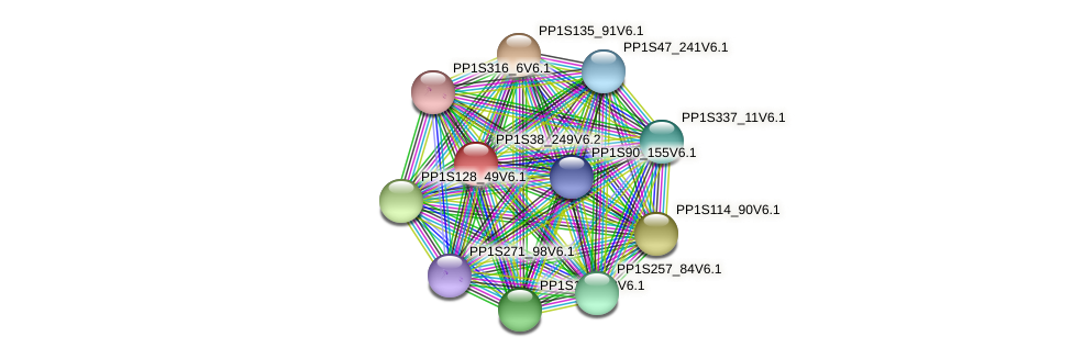 PP1S38_249V6.2 protein (Physcomitrella patens) - STRING interaction network