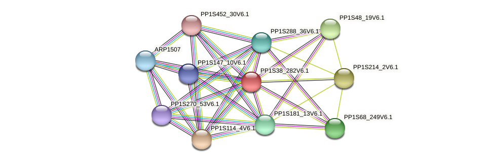 PP1S38_282V6.1 protein (Physcomitrella patens) - STRING interaction network