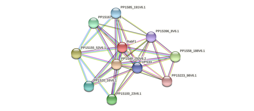 RabF1 protein (Physcomitrella patens) - STRING interaction network