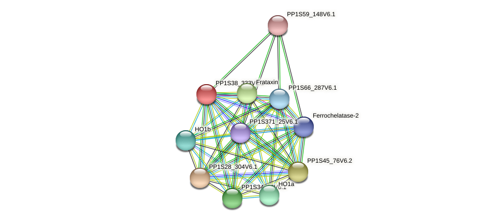 PP1S38_333V6.1 protein (Physcomitrella patens) - STRING interaction network