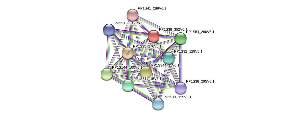 PP1S38_352V6.1 protein (Physcomitrella patens) - STRING interaction network