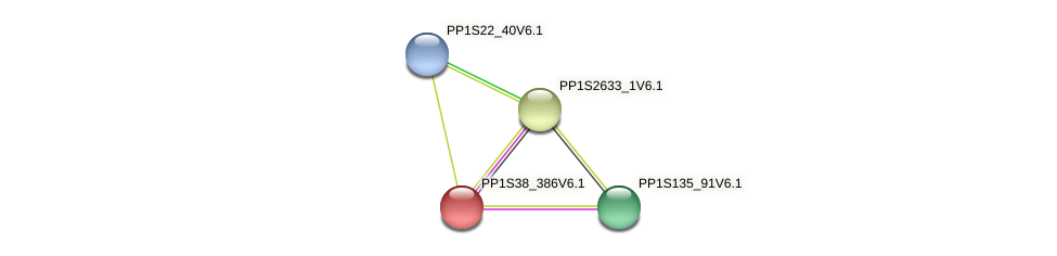 PP1S38_386V6.1 protein (Physcomitrella patens) - STRING interaction network