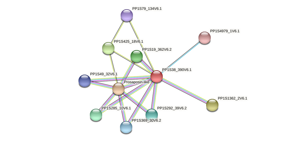 PP1S38_390V6.1 protein (Physcomitrella patens) - STRING interaction network