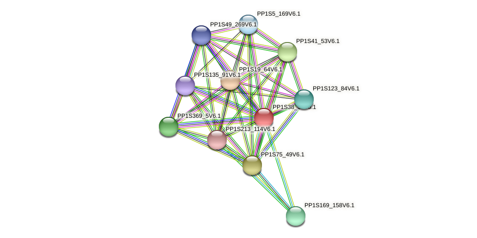 PP1S38_59V6.1 protein (Physcomitrella patens) - STRING interaction network