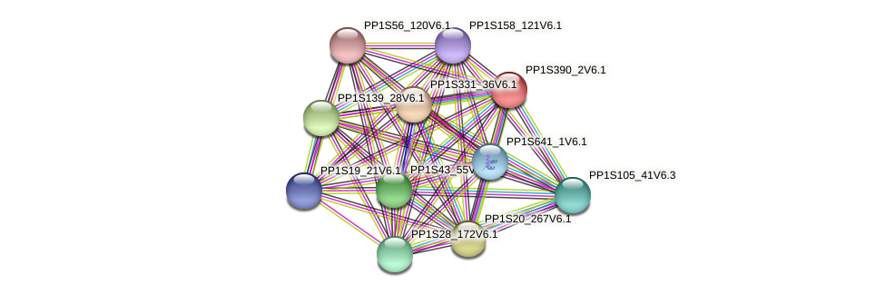 PP1S390_2V6.1 protein (Physcomitrella patens) - STRING interaction network