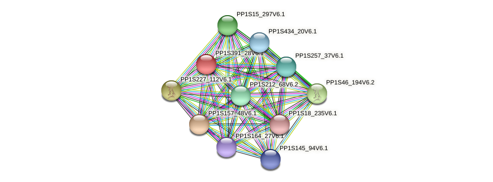 PP1S391_28V6.1 protein (Physcomitrella patens) - STRING interaction network