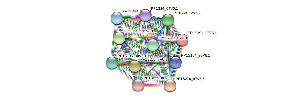 PP1S391_32V6.1 protein (Physcomitrella patens) - STRING interaction network