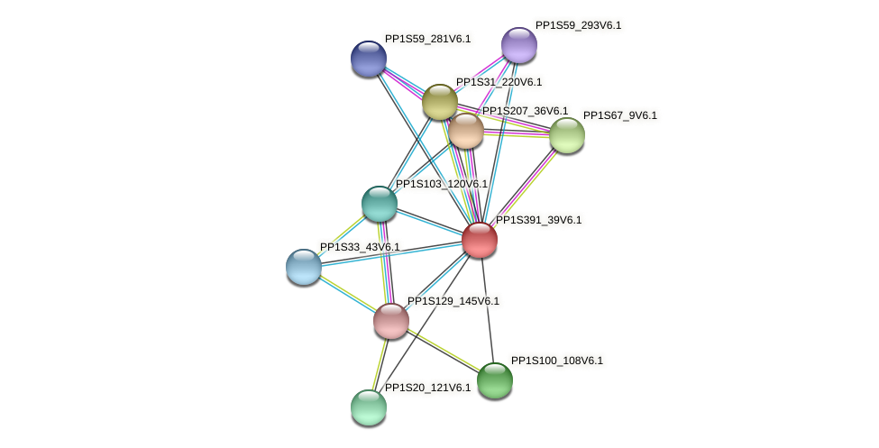 PP1S391_39V6.1 protein (Physcomitrella patens) - STRING interaction network
