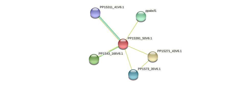 PP1S391_50V6.1 protein (Physcomitrella patens) - STRING interaction network