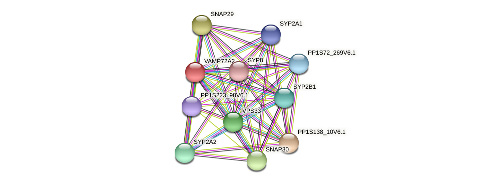 VAMP72A2 protein (Physcomitrella patens) - STRING interaction network