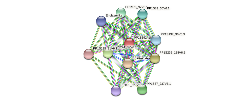 PP1S392_18V6.1 protein (Physcomitrella patens) - STRING interaction network