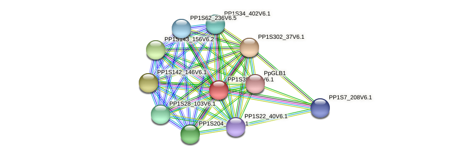 PP1S392_40V6.1 protein (Physcomitrella patens) - STRING interaction network