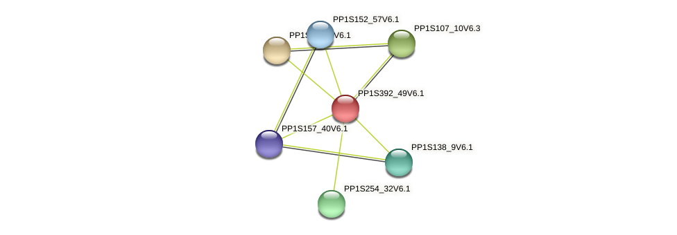 PP1S392_49V6.1 protein (Physcomitrella patens) - STRING interaction network