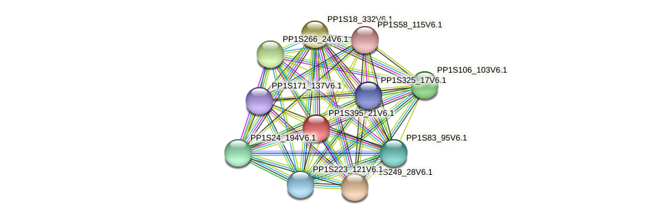 PP1S395_21V6.1 protein (Physcomitrella patens) - STRING interaction network