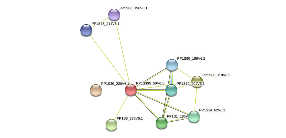 PP1S395_50V6.1 protein (Physcomitrella patens) - STRING interaction network