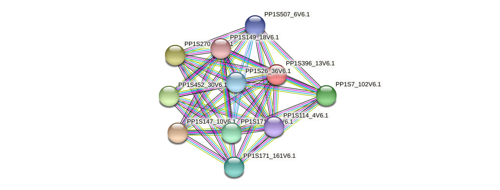 PP1S396_13V6.1 protein (Physcomitrella patens) - STRING interaction network