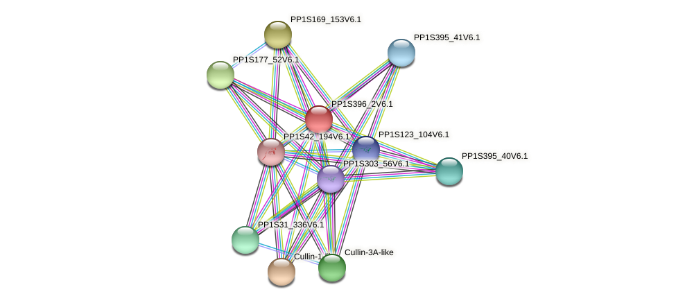 PP1S396_2V6.1 protein (Physcomitrella patens) - STRING interaction network