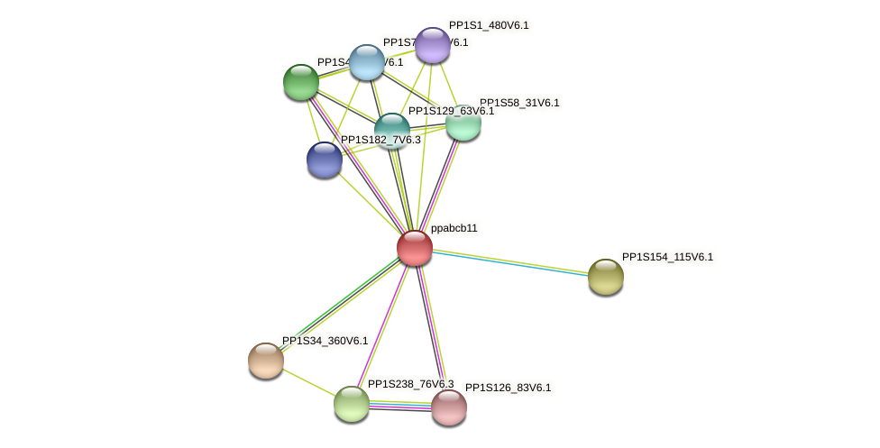 ppabcb11 protein (Physcomitrella patens) - STRING interaction network