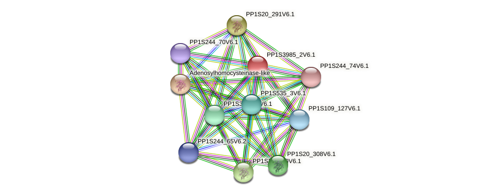 PP1S3985_2V6.1 protein (Physcomitrella patens) - STRING interaction network