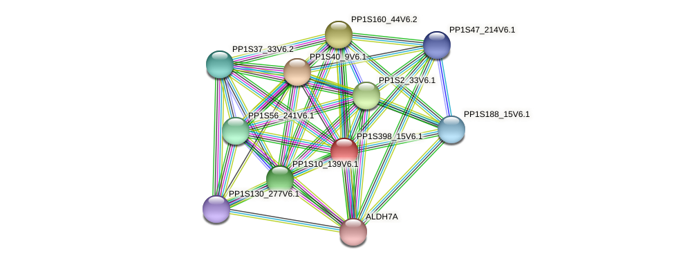 PP1S398_15V6.1 protein (Physcomitrella patens) - STRING interaction network