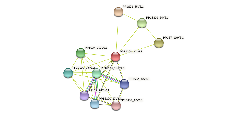 PP1S398_21V6.1 protein (Physcomitrella patens) - STRING interaction network