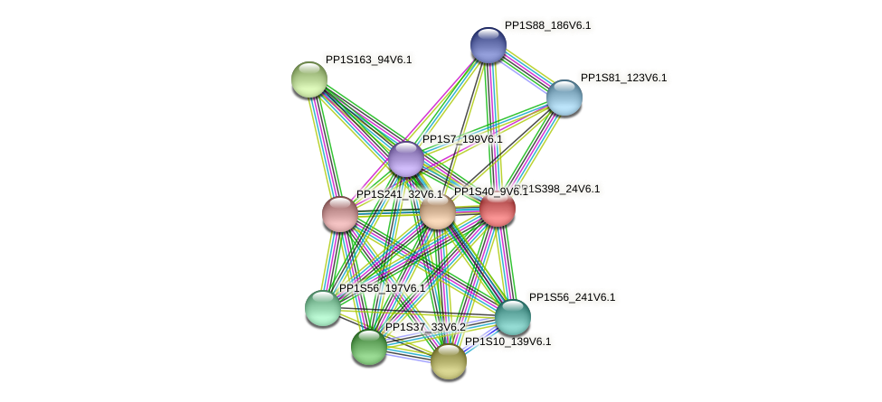 PP1S398_24V6.1 protein (Physcomitrella patens) - STRING interaction network