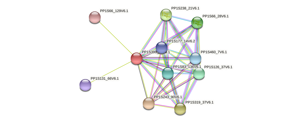 PP1S399_20V6.1 protein (Physcomitrella patens) - STRING interaction network