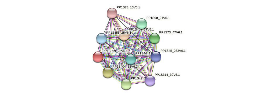 PP1S399_23V6.1 protein (Physcomitrella patens) - STRING interaction network