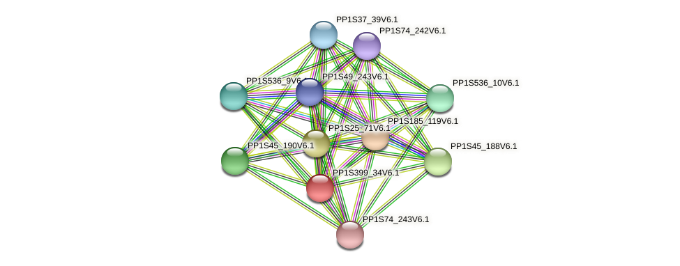 PP1S399_34V6.1 protein (Physcomitrella patens) - STRING interaction network
