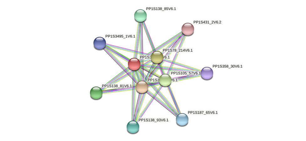 PP1S39_104V6.1 protein (Physcomitrella patens) - STRING interaction network