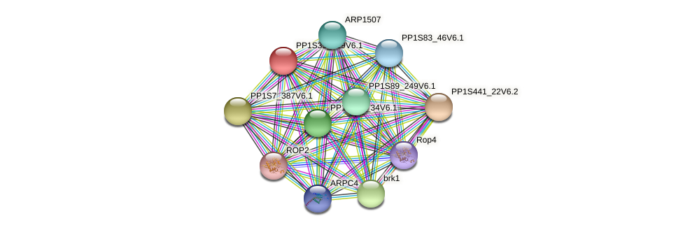 PP1S39_129V6.1 protein (Physcomitrella patens) - STRING interaction network