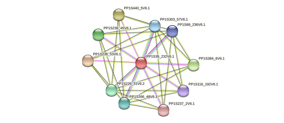 PP1S39_232V6.1 protein (Physcomitrella patens) - STRING interaction network