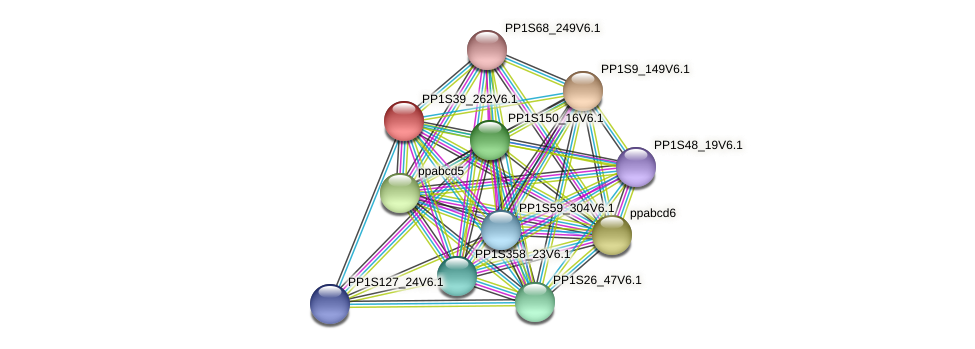 PP1S39_262V6.1 protein (Physcomitrella patens) - STRING interaction network