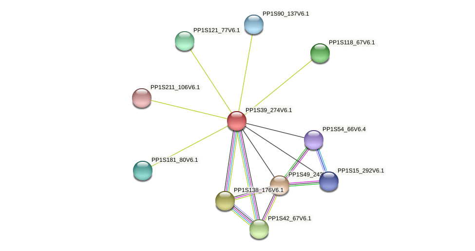PP1S39_274V6.1 protein (Physcomitrella patens) - STRING interaction network