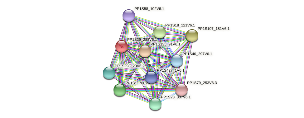 PP1S39_288V6.1 protein (Physcomitrella patens) - STRING interaction network