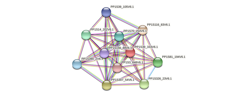 PP1S39_333V6.1 protein (Physcomitrella patens) - STRING interaction network