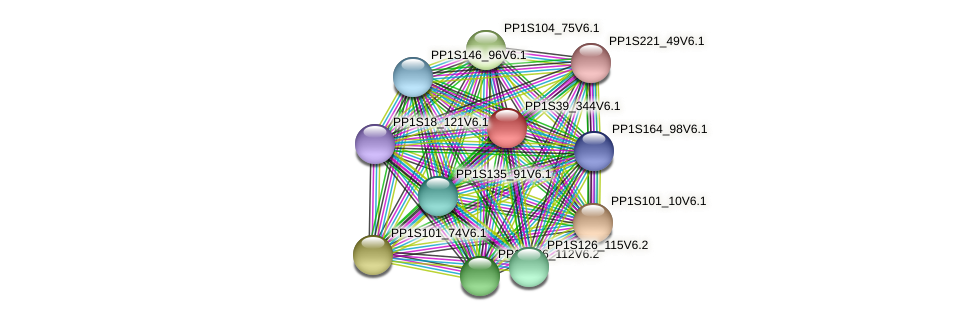 PP1S39_344V6.1 protein (Physcomitrella patens) - STRING interaction network