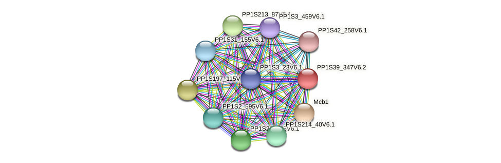 PP1S39_347V6.2 protein (Physcomitrella patens) - STRING interaction network