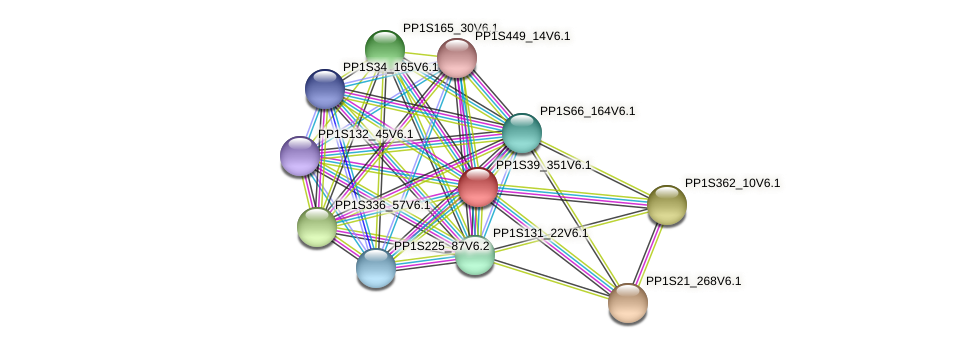 PP1S39_351V6.1 protein (Physcomitrella patens) - STRING interaction network