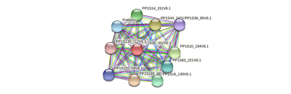 PP1S39_352V6.1 protein (Physcomitrella patens) - STRING interaction network