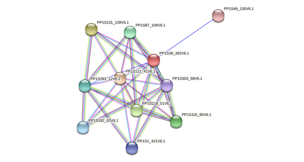 PP1S39_382V6.1 protein (Physcomitrella patens) - STRING interaction network