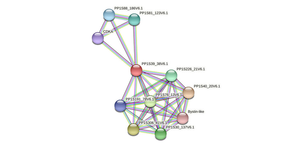 PP1S39_38V6.1 protein (Physcomitrella patens) - STRING interaction network