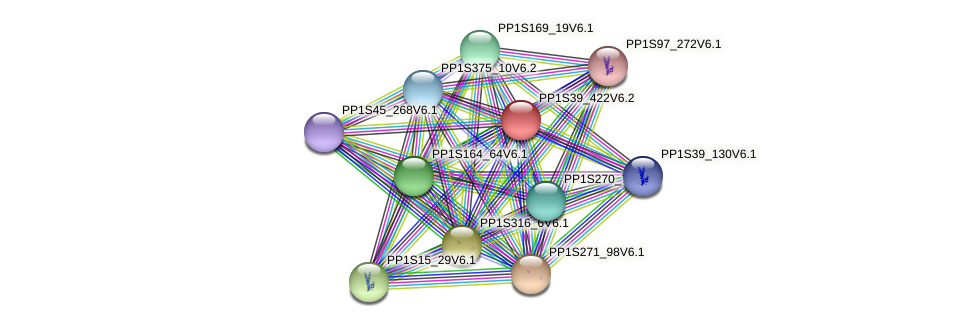 PP1S39_422V6.2 protein (Physcomitrella patens) - STRING interaction network