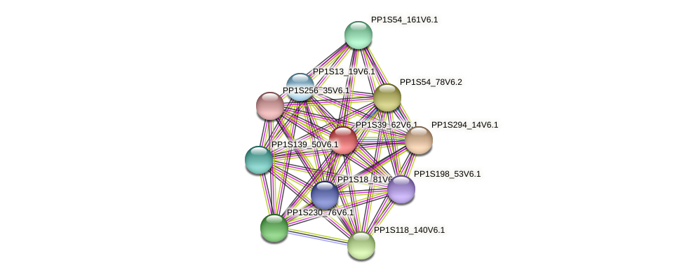 PP1S39_62V6.1 protein (Physcomitrella patens) - STRING interaction network