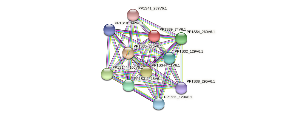 PP1S39_74V6.1 protein (Physcomitrella patens) - STRING interaction network