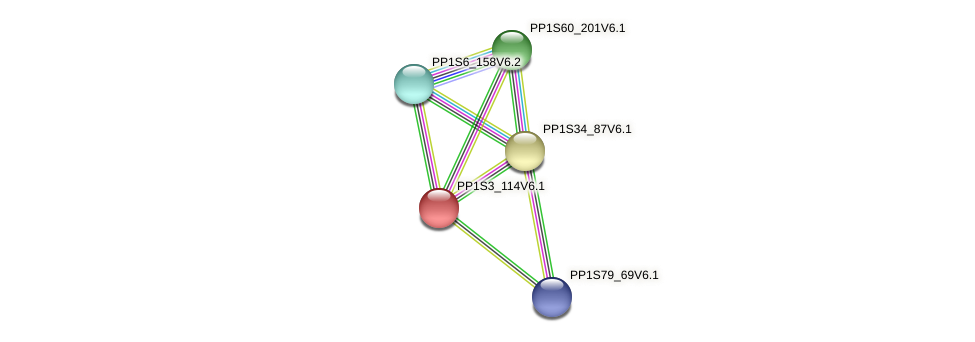 PP1S3_114V6.1 protein (Physcomitrella patens) - STRING interaction network