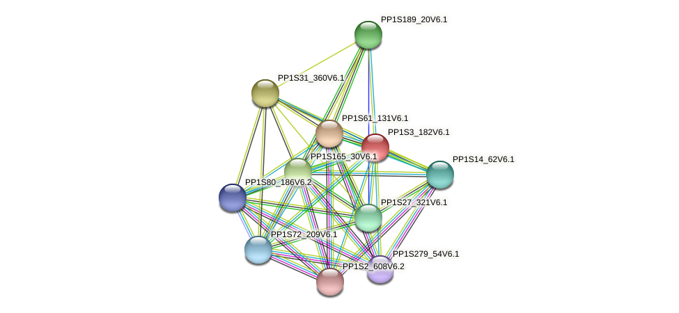 PP1S3_182V6.1 protein (Physcomitrella patens) - STRING interaction network